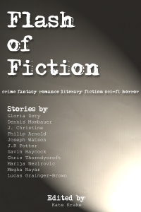 A Flash of Fiction